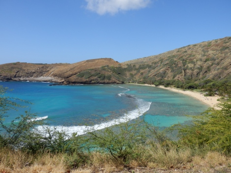 Over top view of Hanauma Bay. Apparently its a partially collapsed volcano that turned into a bay.