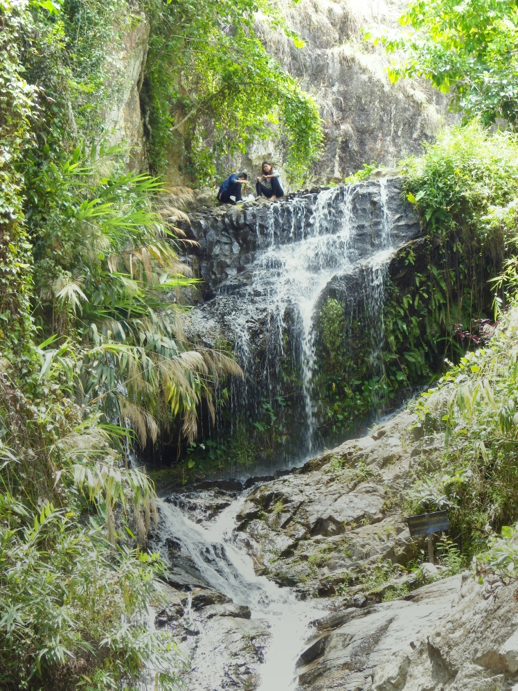 Sweet little waterfall on the final ascent to the temple. Tons if great areas to picnic and enjoy a nice sunny day
