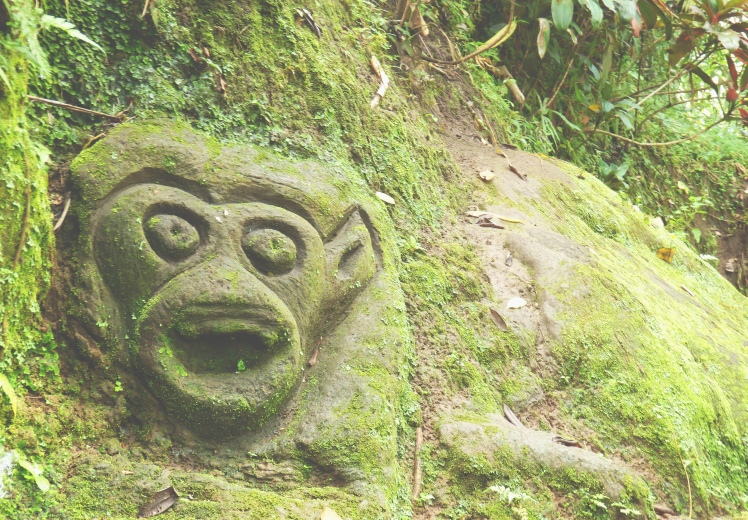 Old wall carvings in the jungle