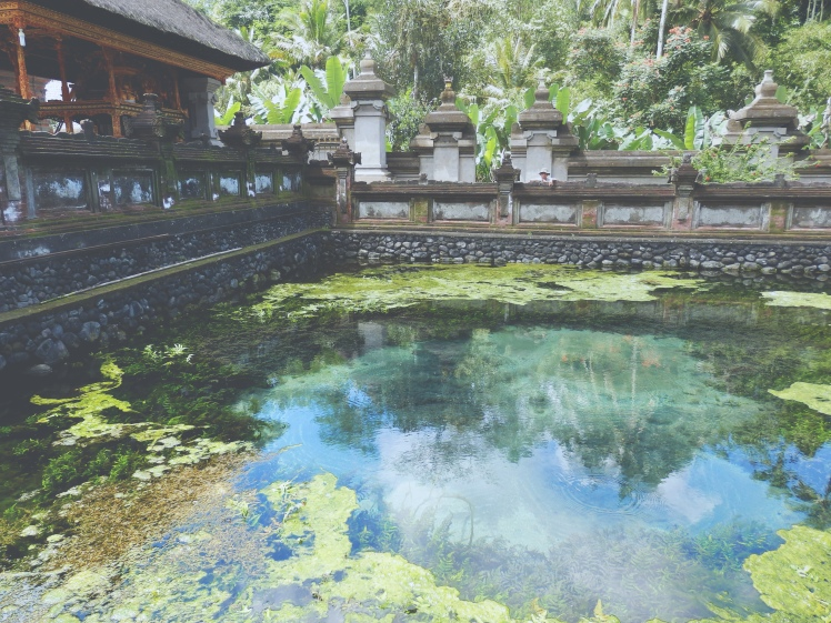 A pool in the temple complex of Tirta Empul built around one the the natural springs. The spring itself is still active but very weak