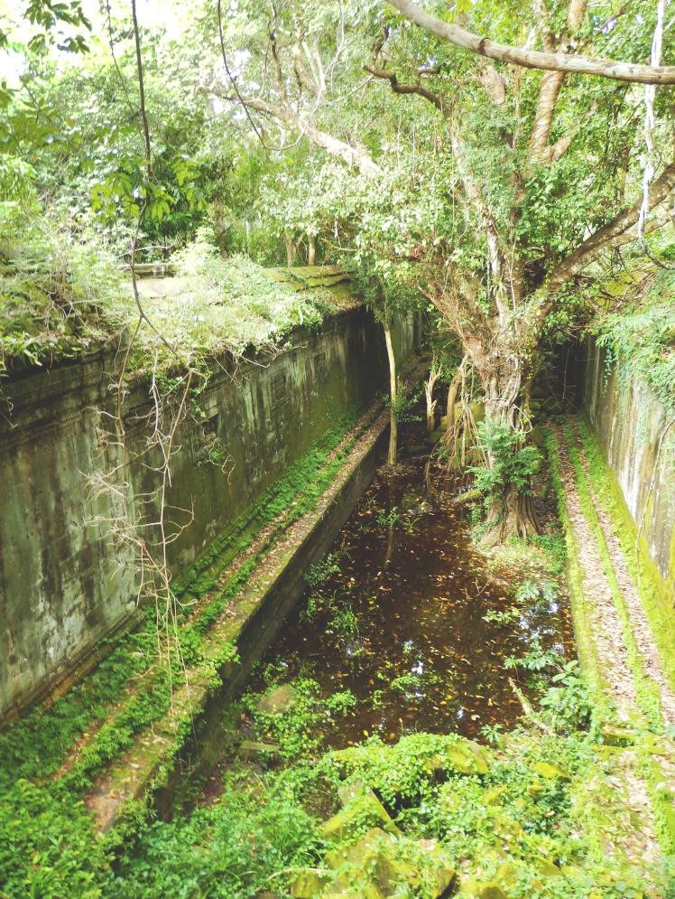 Ruins of Beng Mealea