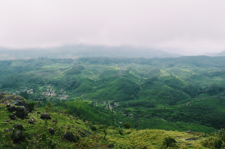 Hills on Munnar