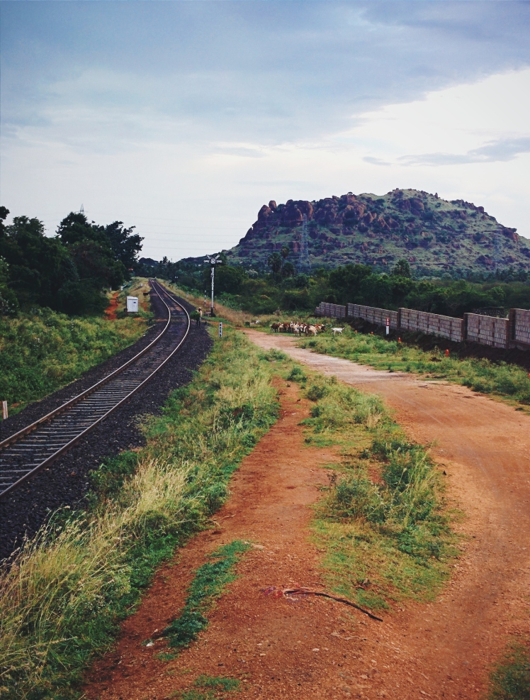The train tracks running through our little town of Tenkasi
